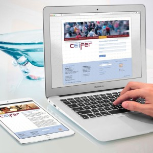 Website Ceifer Accountants & Belastingadviseurs
